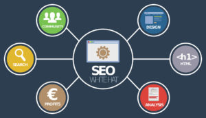 Michael Rayburn SEO and complete suite of digital services